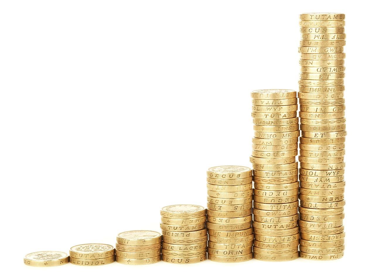 what is profit and loss management nuvest management services
